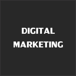 Mint-media-services-Digital-marketing